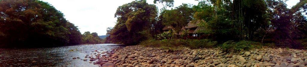 Amazonia, Ecuador - made by MiliMundo